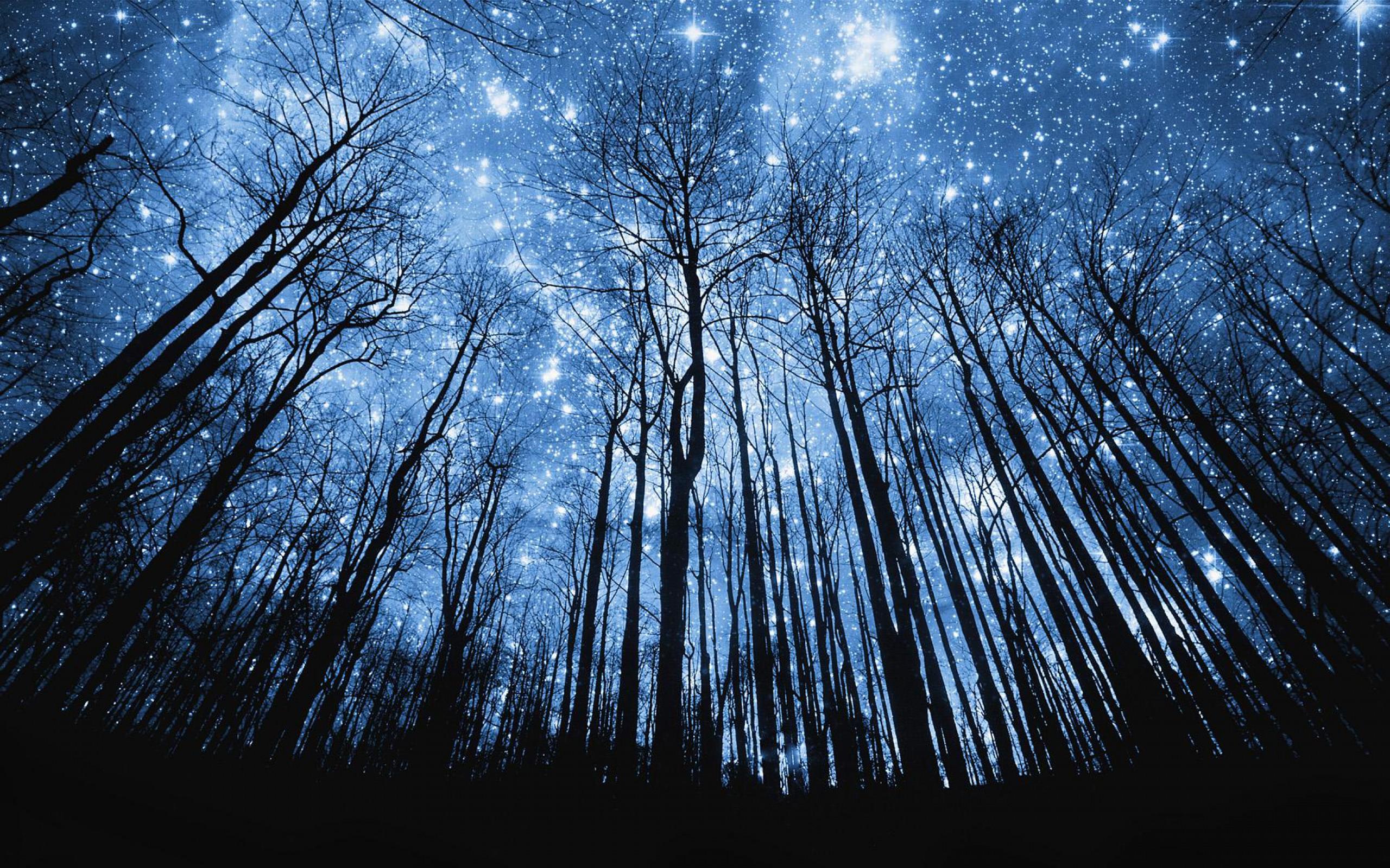 starry night  ke9svxml3ctkvgix59xl