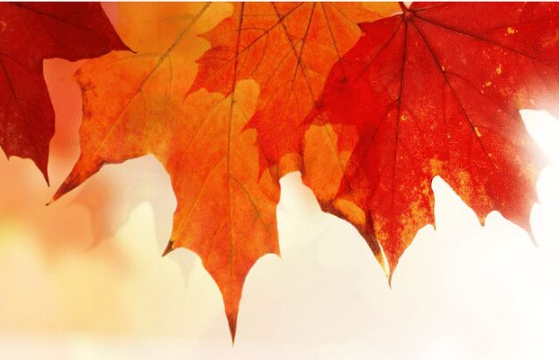 Autumn Reverie: a celebration of song